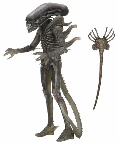 "Alien - 7"" Scale Action Figure - 40th Anniversary Big Chap (Giger Concept Variant)"