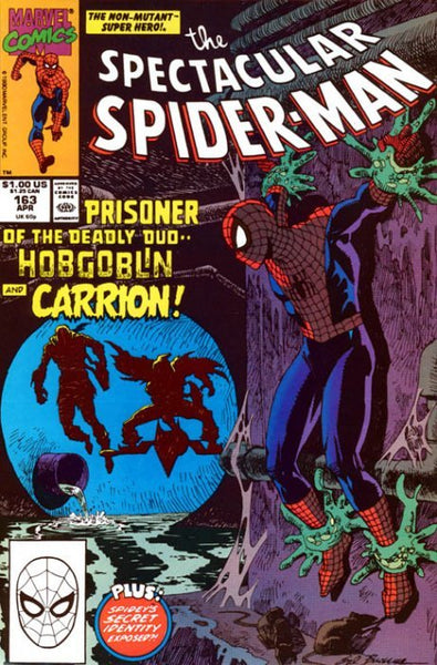 Spectacular Spider-Man (1976) #163