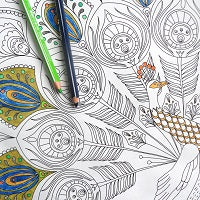 Adult Colouring