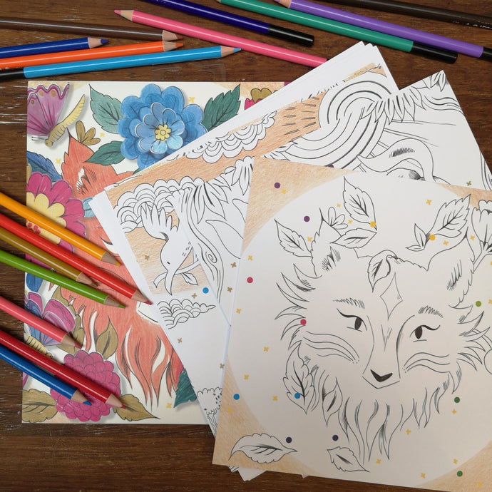 Forest colouring in