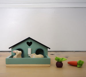 Pet rabbit and guinea pig set