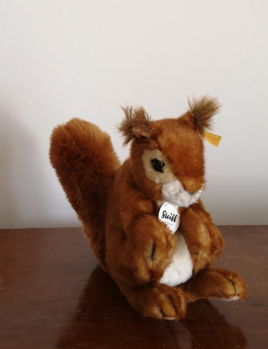 Red squirrel cuddly