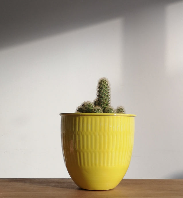 Yellow enamel flower pot