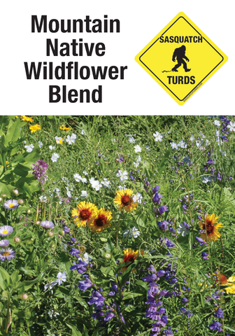 native pollinator friendly seeds