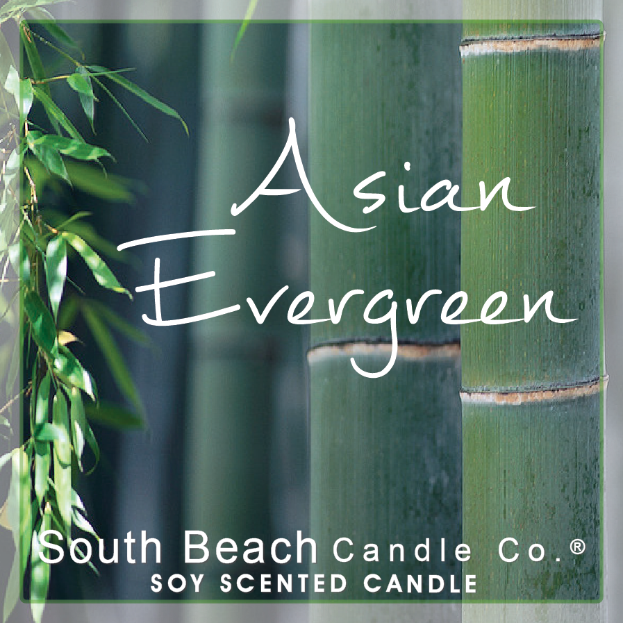 Asian Evergreen