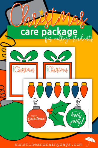Christmas Care Package For College Students - PDF