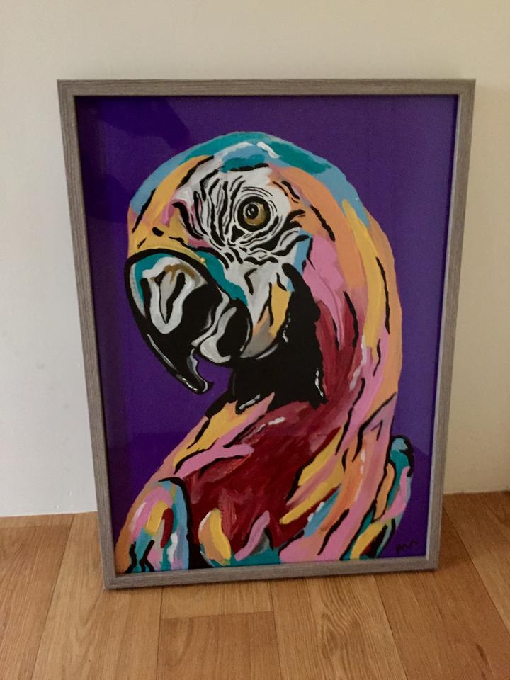 The Cumquat Tree Bird Parrot Art