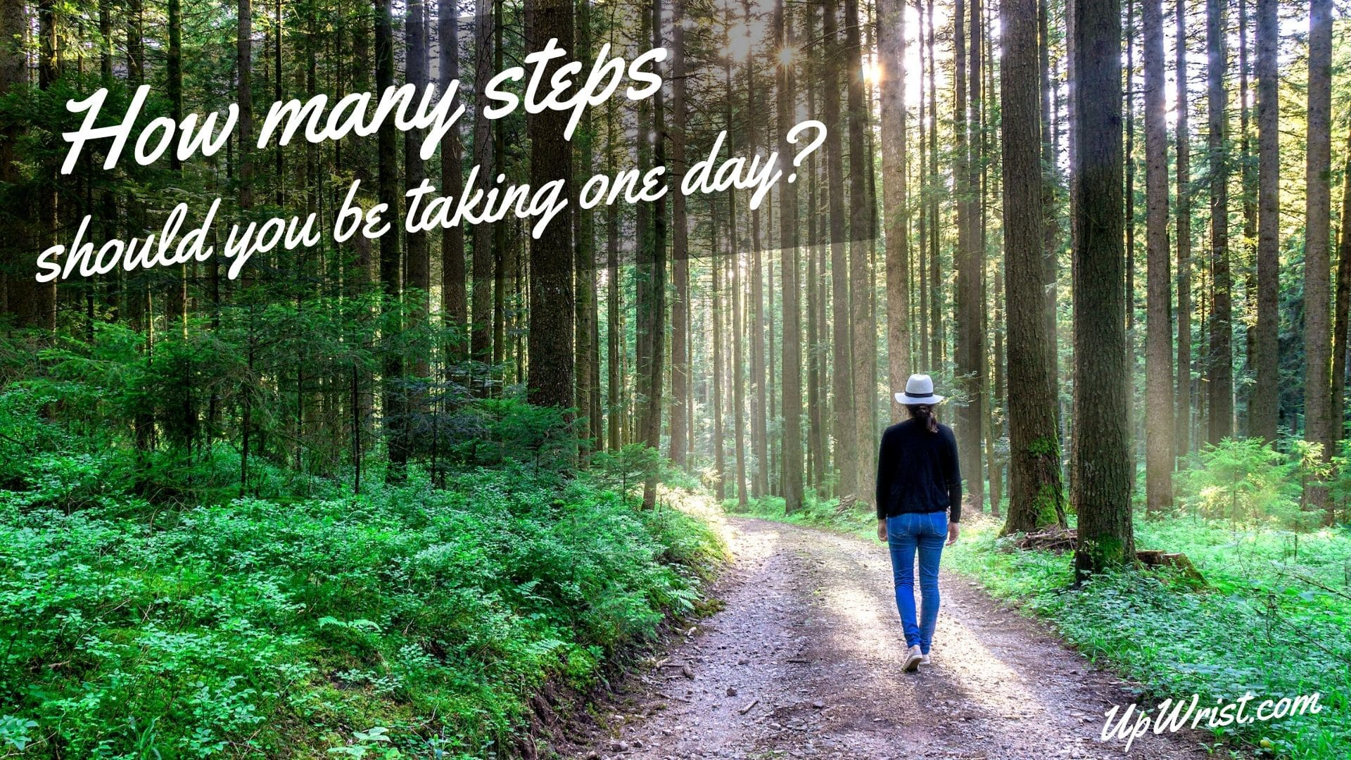 How many steps should you be taking one day?