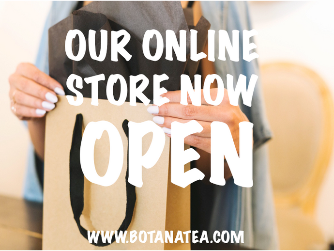 Online Store Launch