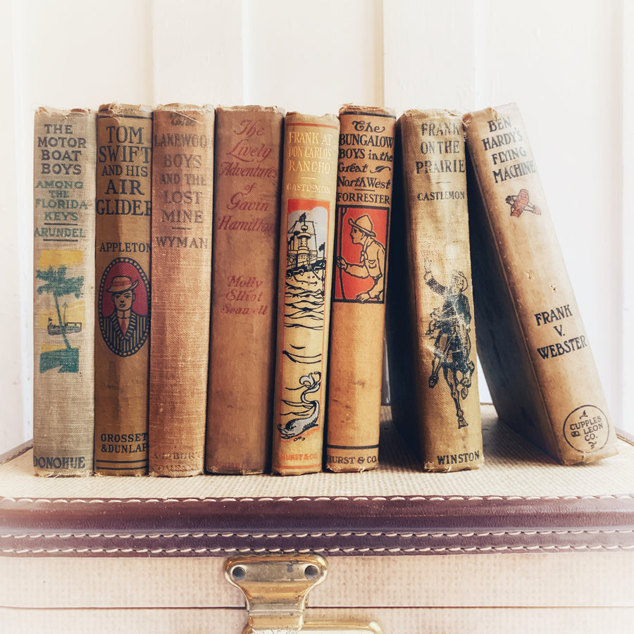 Shabby Distressed Vintage Novel Collection