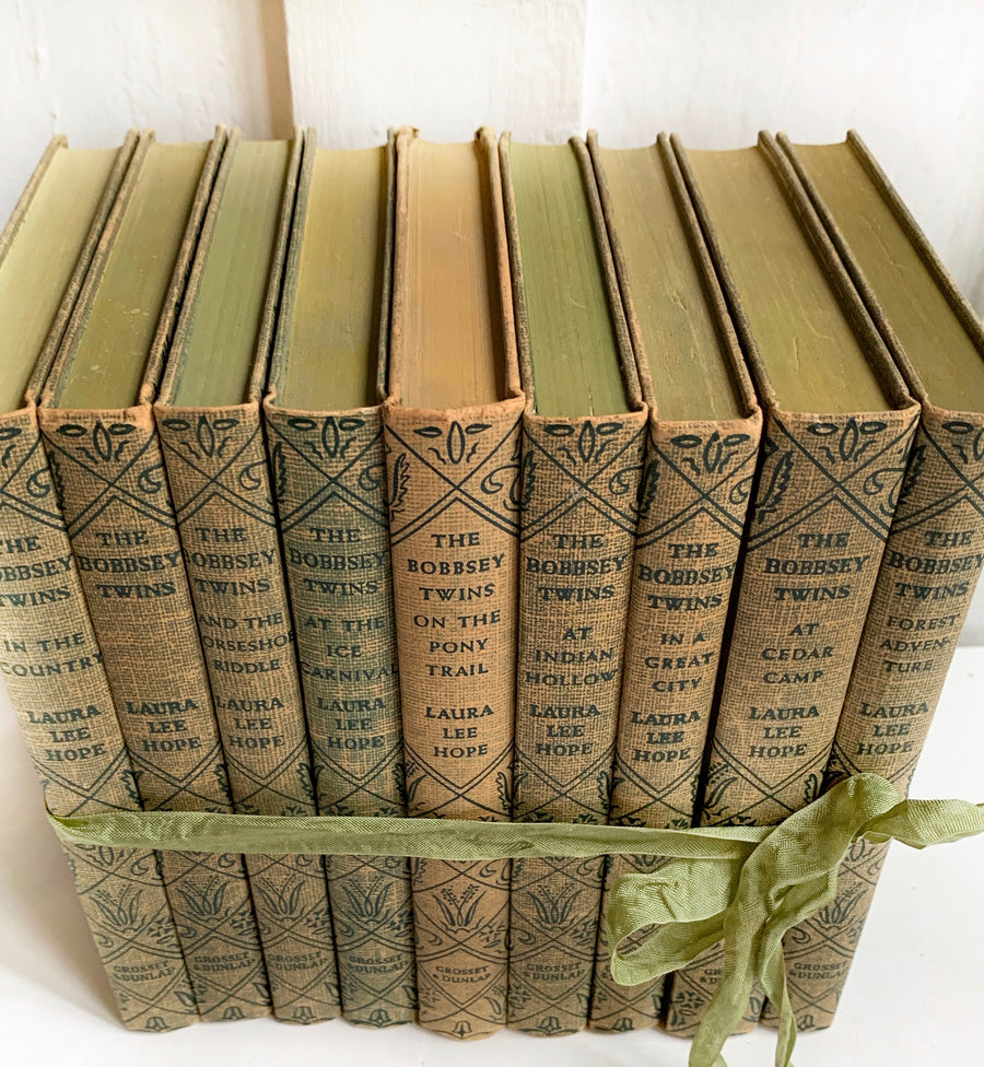 Vintage The Bobbsey Twins Collection