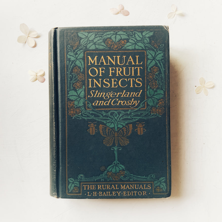 1919, Manual of Fruit Insects, Art Nouveau Cover
