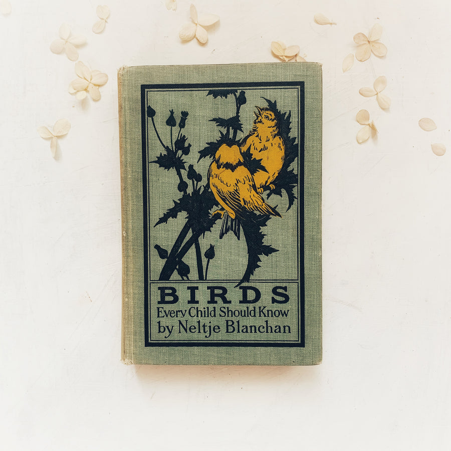 1913 - Birds Every Child Should Know