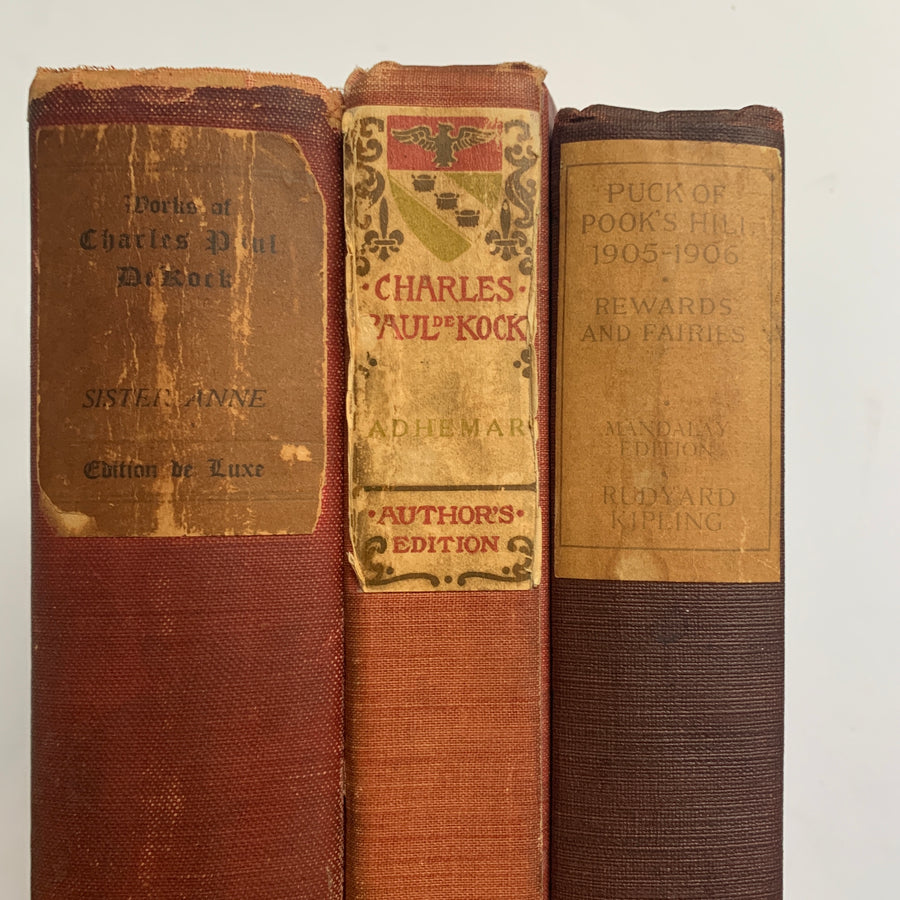 Distressed Collection of Old Books in Muted Colors