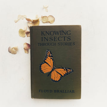 1918 - Knowing Insects Through Stories, First Edition