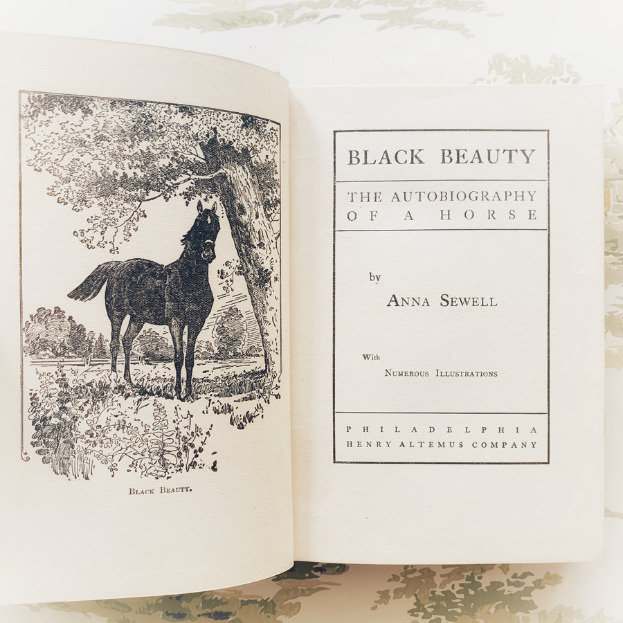 1897 - Black Beauty