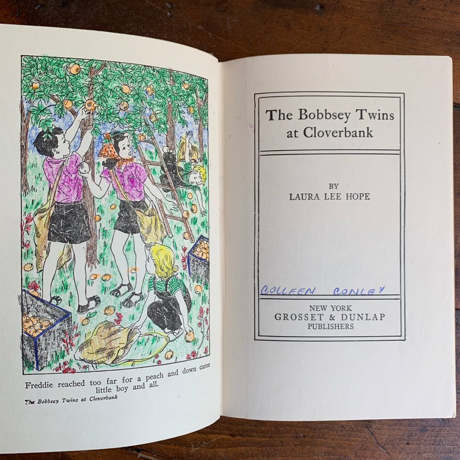 Vintage Bobbsey Twins Set