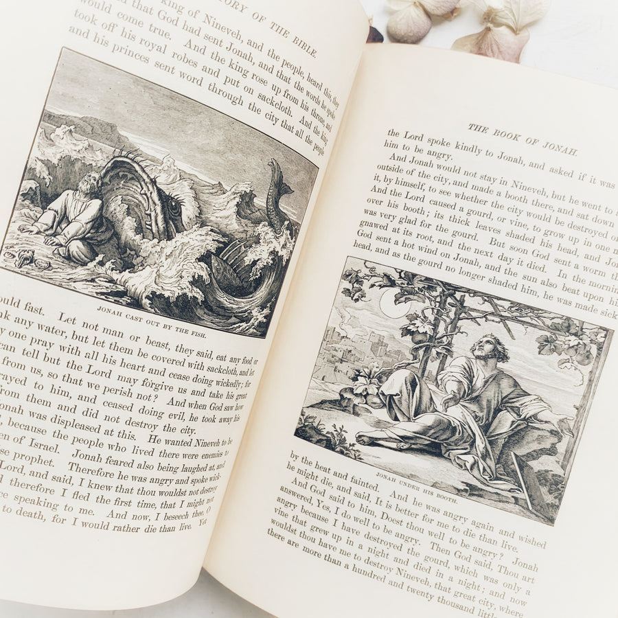 1901 - The Story of the Bible, From Genesis to Revelation