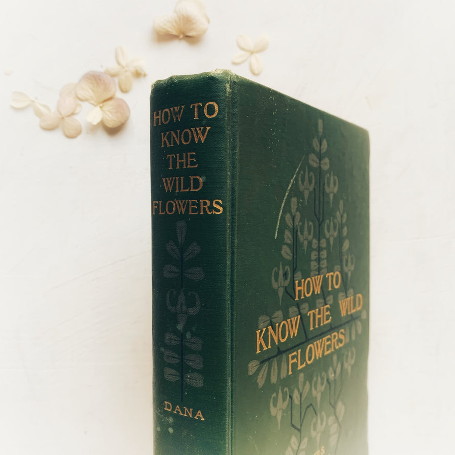 1917 - How to Know The Wild Flowers