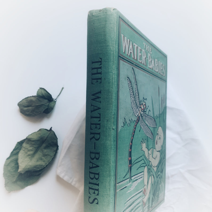 1900 - Kingsley's The Water-Babies, A fairy Tale For A Land-Baby