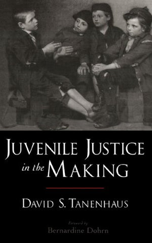 Juvenile Justice In The Making (Studies In Crime And Public Policy)