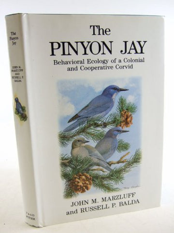 The Pinyon Jay: Behavioral Ecology Of A Colonial And Cooperative Corvid (T & Ad Poyser)