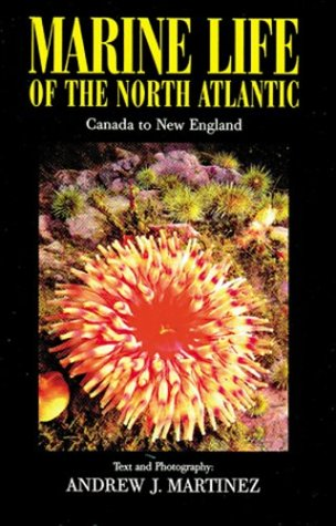 Marine Life Of The North Atlantic: Canada To New England