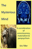 The Mysterious Mind: A Consideration Of Consciousness, Materialism & Panpsychism
