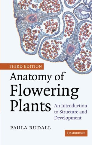 Anatomy Of Flowering Plants: An Introduction To Structure And Development