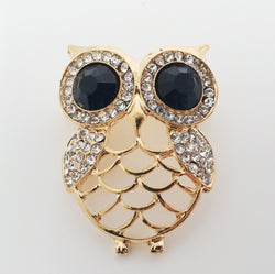 Owl Brooch See through Body