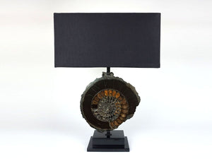 Pyritized Ammonite Lamp