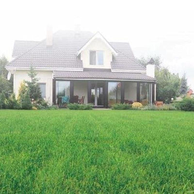Illusion-Synthetic Grass Turf-GrassTex-Hiline WI