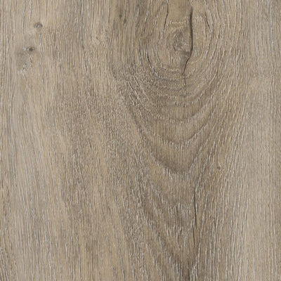"Noble Classic Plus™ XL-Plank Flooring-Earthwerks®-Berkshire-9.5"" x 60""-Hiline WI"