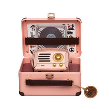 Load image into Gallery viewer, Flamingo Pink Metal Radio & Bluetooth Speaker