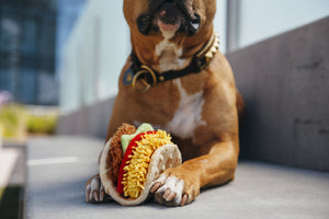 P.L.A.Y. Pet Food Taco Toy