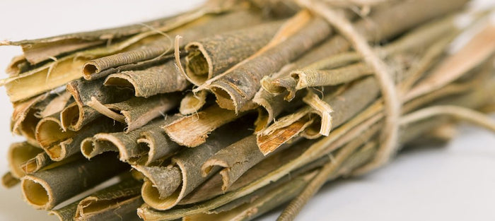 Willow Bark is Nature's Aspirin for Headache