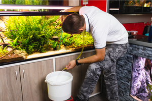How to deep clean your fish tank - 8 easy steps