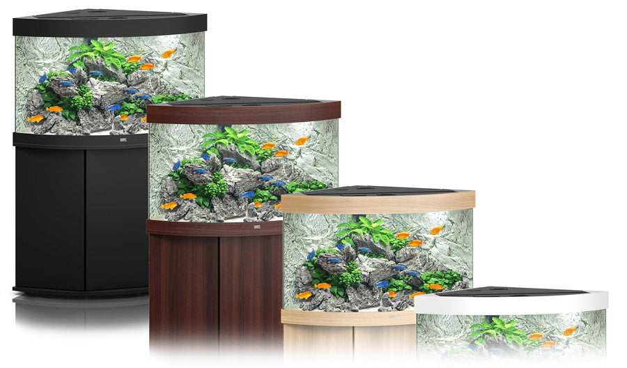 Choosing The Right Aquarium For You