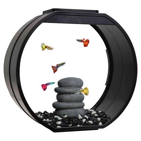 Fish R Fun Deco Tank