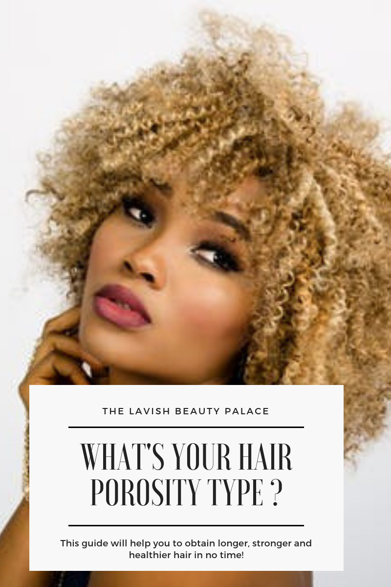 What's Your Hair Porosity Type ?