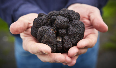 Truffles contain different elements