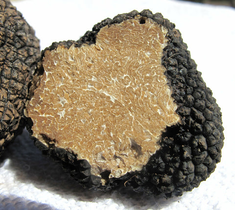 The shape of the dark-brown truffles is similar to nugget