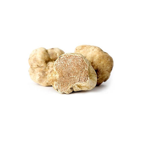 FRESH WHITE TRUFFLE (piece size 40-90g)