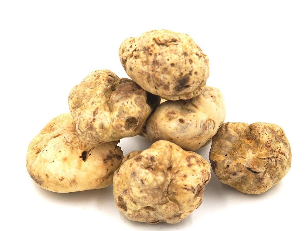 FRESH WHITE TRUFFLE (piece size 10-40g)