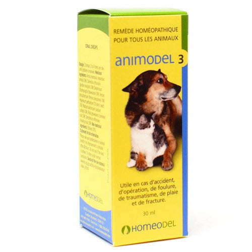 Animodel 3 (30ml)