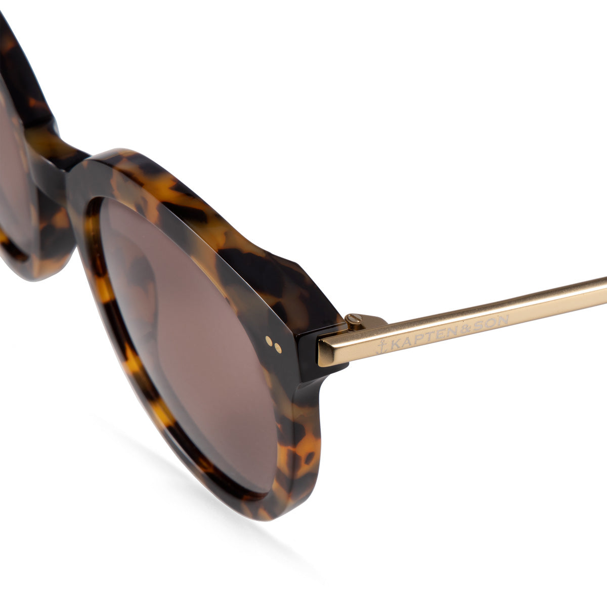 Paris Amber Tortoise Brown - kapten & Son - South Africa