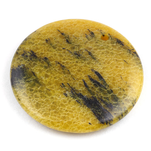 40MM Yellow Turtle Jasper Round Gem Stone Pendant