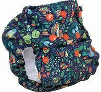 Smart bottoms 3.1 organic cotton cloth nappy Enchanted
