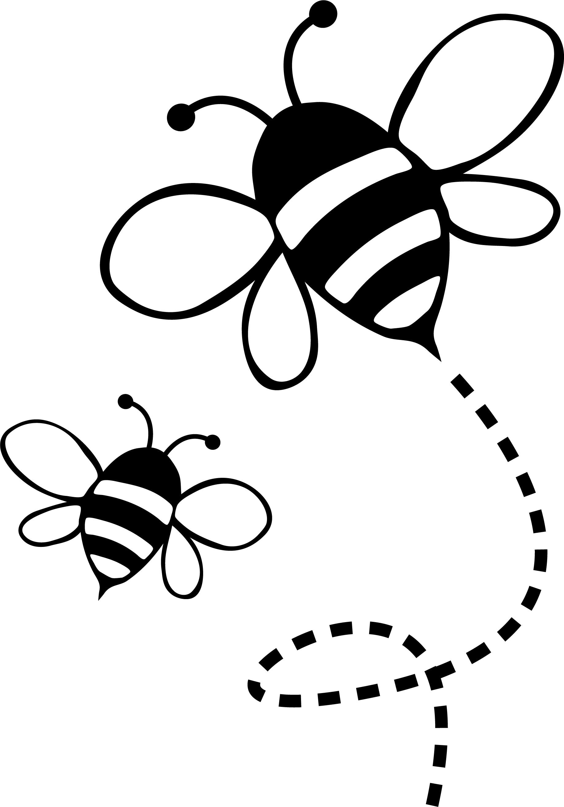 Insects-Bee-2