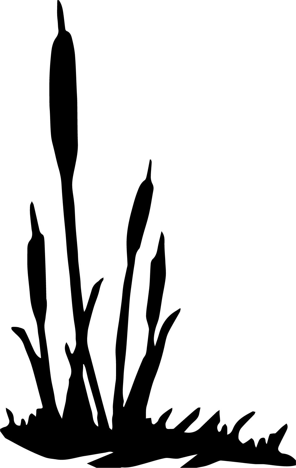 Cattails-4